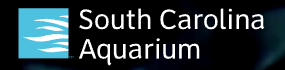 South Carolina Aquarium Promo Codes