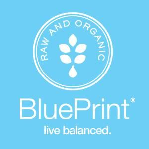 Blueprint Promo Codes